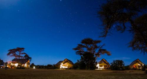 Ekorian's Mugie Camp at night