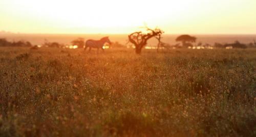 Sunrise at Mugie