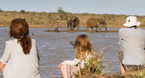 Sitting with elephants at the Mugie dam