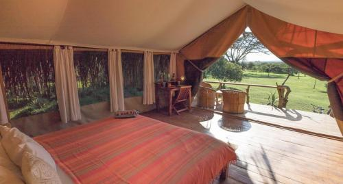 Ekorian's Mugie Camp, view looking out if the tent