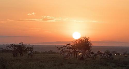 Sun rise at Mugie