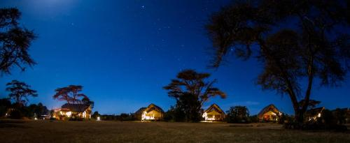 Ekorian;s Mugie Camp at night